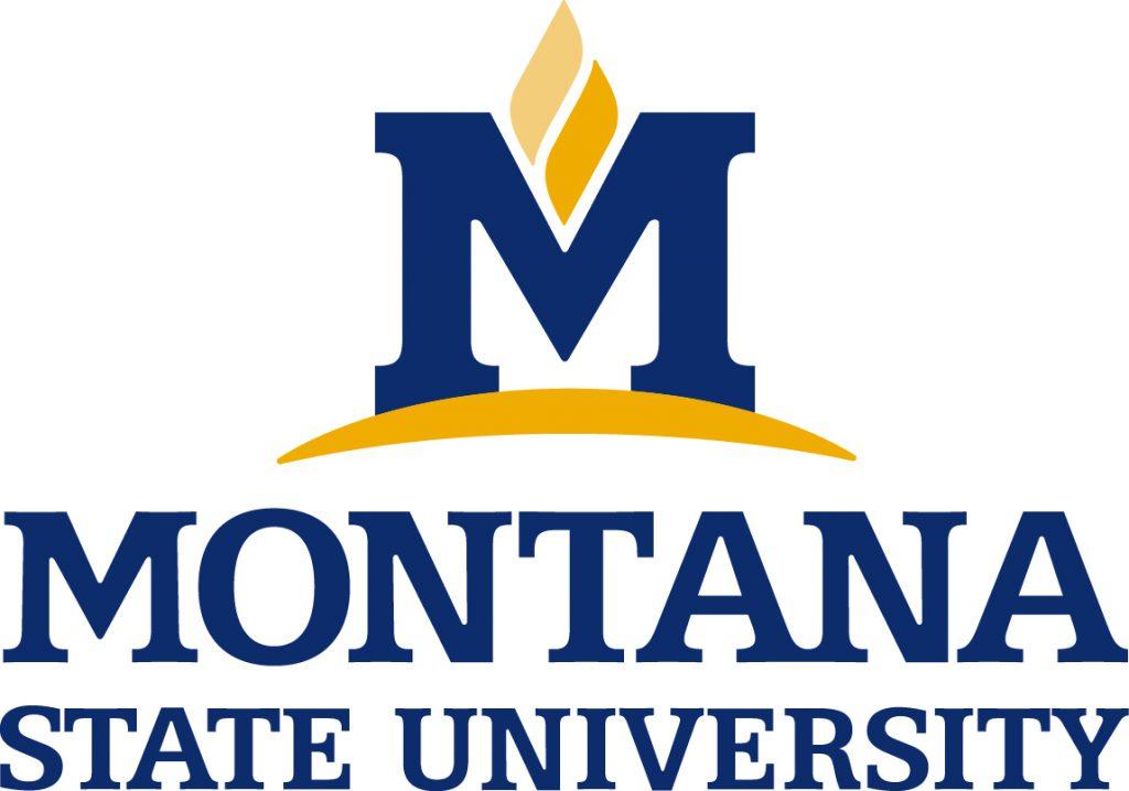 Montana State internships abroad